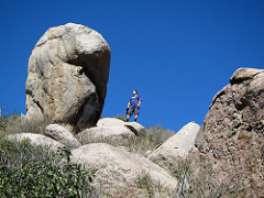 Between a rock and a hard place with a technical white paper